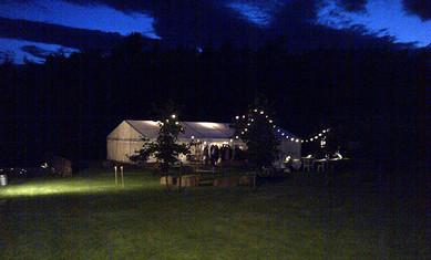 Weddings-night.jpg