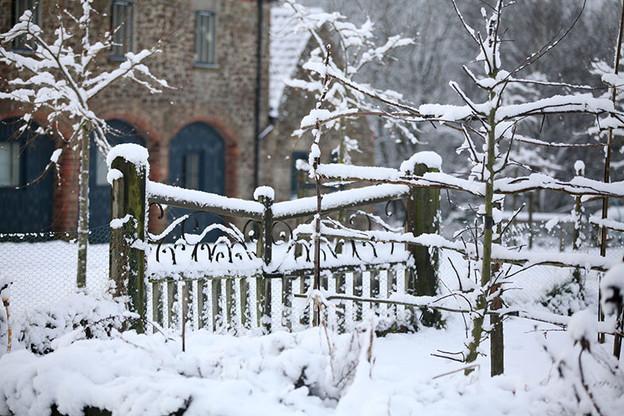 Gardens1-snowy-garden-gate.jpg