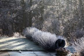 Gardens2-frosty-lavender.jpg