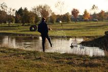 Landscapes-pond3.jpg