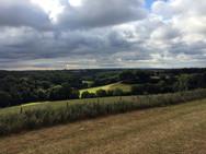 Landscapes-view.jpg