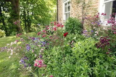 Gardens2-summer-flower-bed.jpg