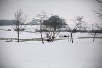 Landscapes-snow2.jpg