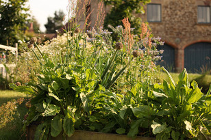 Exterior3-sorrel-raised-beds.jpg