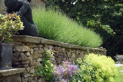 Gardens2-lavender-wall.jpg