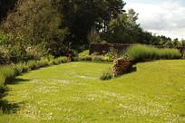 Gardens2-lawns.jpg