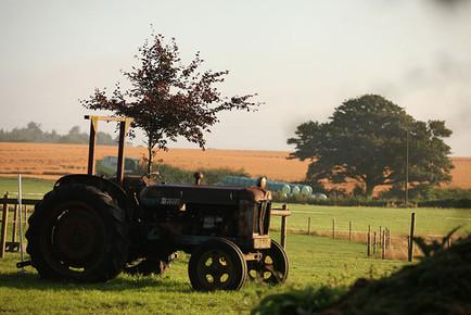 Landscapes-tractor.jpg