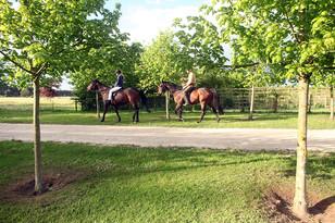 Landscapes-horseriders.jpg