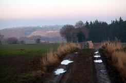 Landscapes-muddy-track.jpg