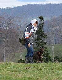 Hundeschulen Team Slydog