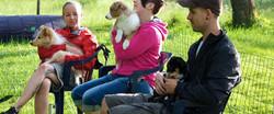 Natural Dogmanship Hundeschule SLYD