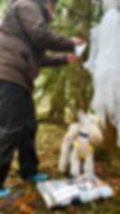 Hundeschule Willisau