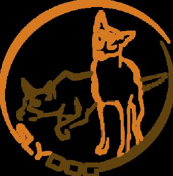 Hundeschule Slydog
