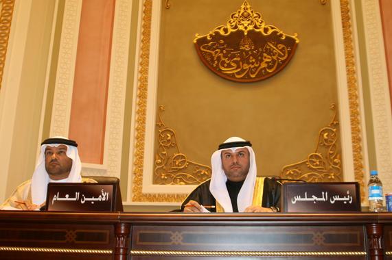 رئيس لإحدى جلسات المجلس الاستشاري.jpg