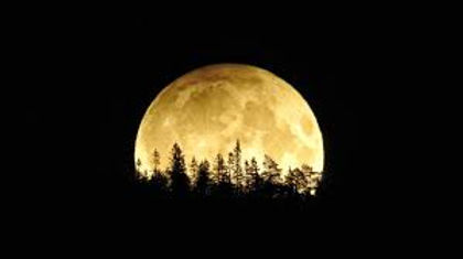 ירח מלא 1.jpg