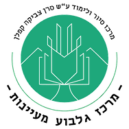לוגו חדש שקוף.PNG