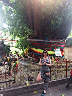 posture de l'arbre