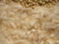 soybeanfiber.jpg
