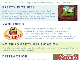 What is Greenwashing? The Real Meaning Behind Food Labels