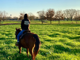 White Oak Pastures, Regenerative Agriculture & the Climate Crisis