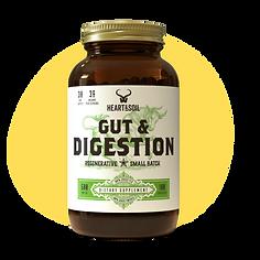 heart&soil gut & digestion -2.png