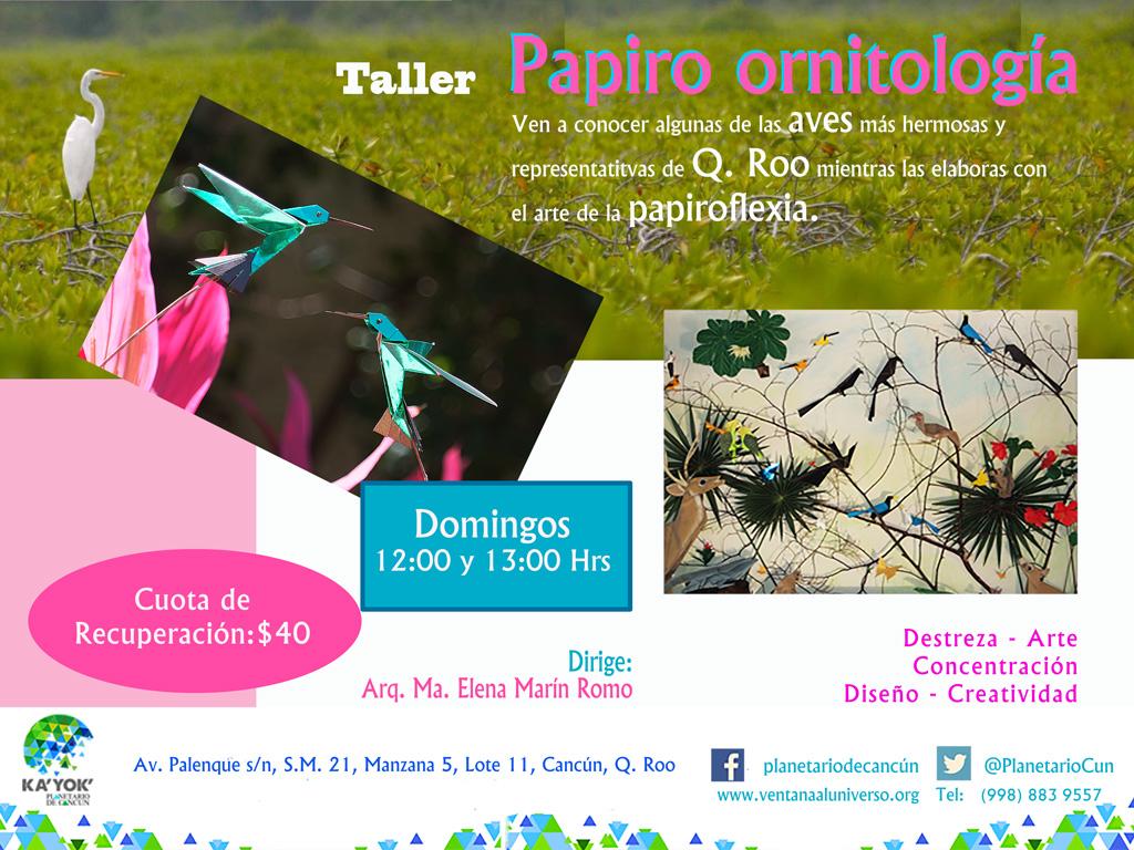 Papiro Ornitología