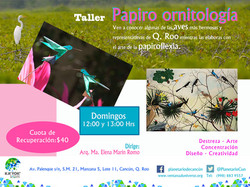 Papiro-Ornitología