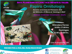 Papiro Orinitología (Papiroflexia)