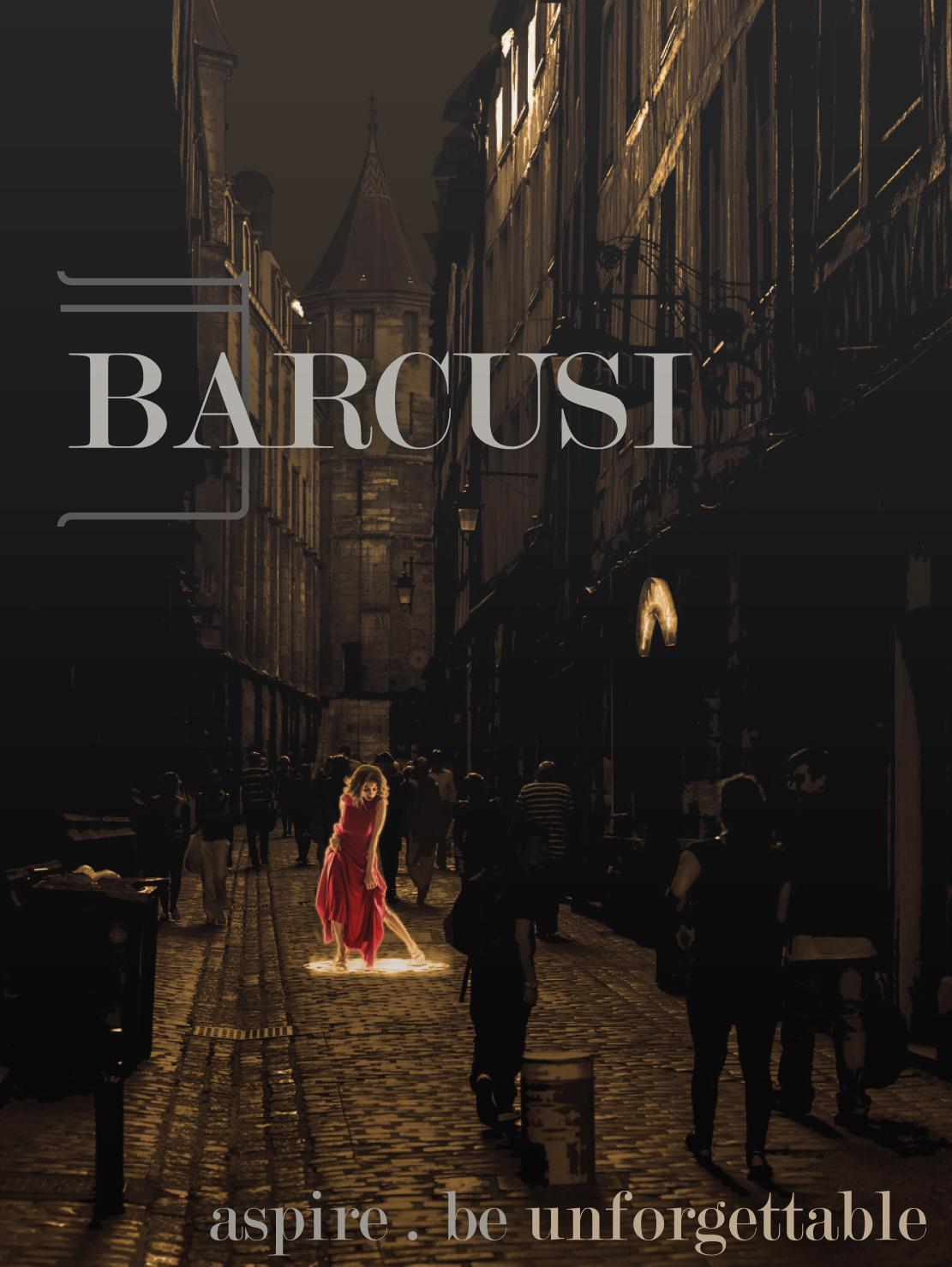 BARCUSI Ad 5