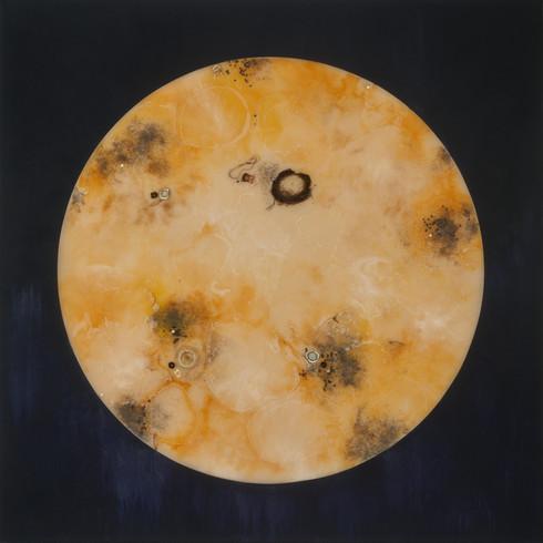"Hunger Moon | 60"" x 60"" | resin, bones, poppyseeds, snake and cicada wings on panel | 2021"