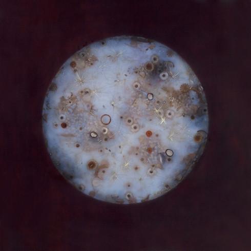 "Shadow Moon | 24"" x 24"" | resin and seeds on panel | 2012"