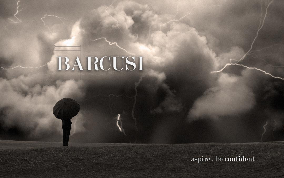 BARCUSI Ad 2