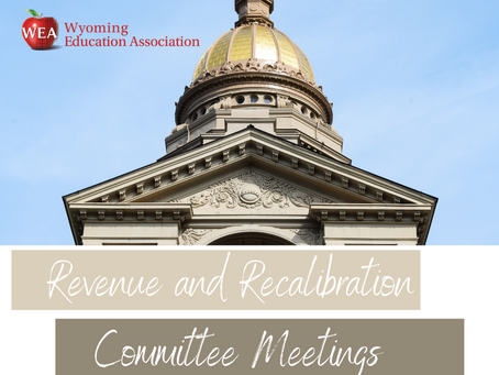 Work Ahead for Education Lobby: Recap of the Revenue and Recalibration Committee Meetings