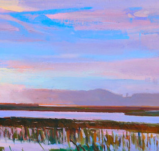 Kiawah Marsh
