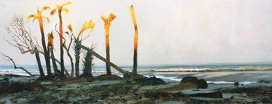 Twilight, Island