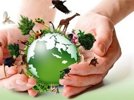 A relação entre meio ambiente e saúde e a importância dos princípios da prevenção e da precaução