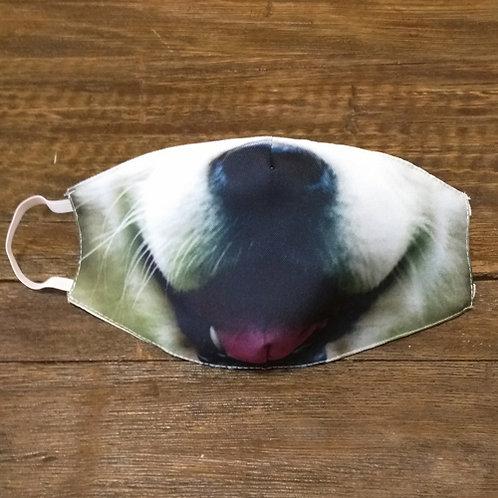 Máscara Labrador