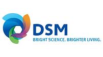 dsm-vector-logo.png