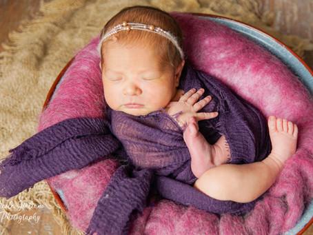 Baby Fotoshooting im Fotostudio