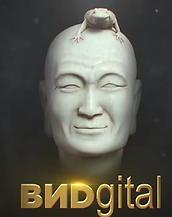 VIDgital_2017.png