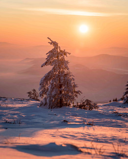 beautiful winter.jpg