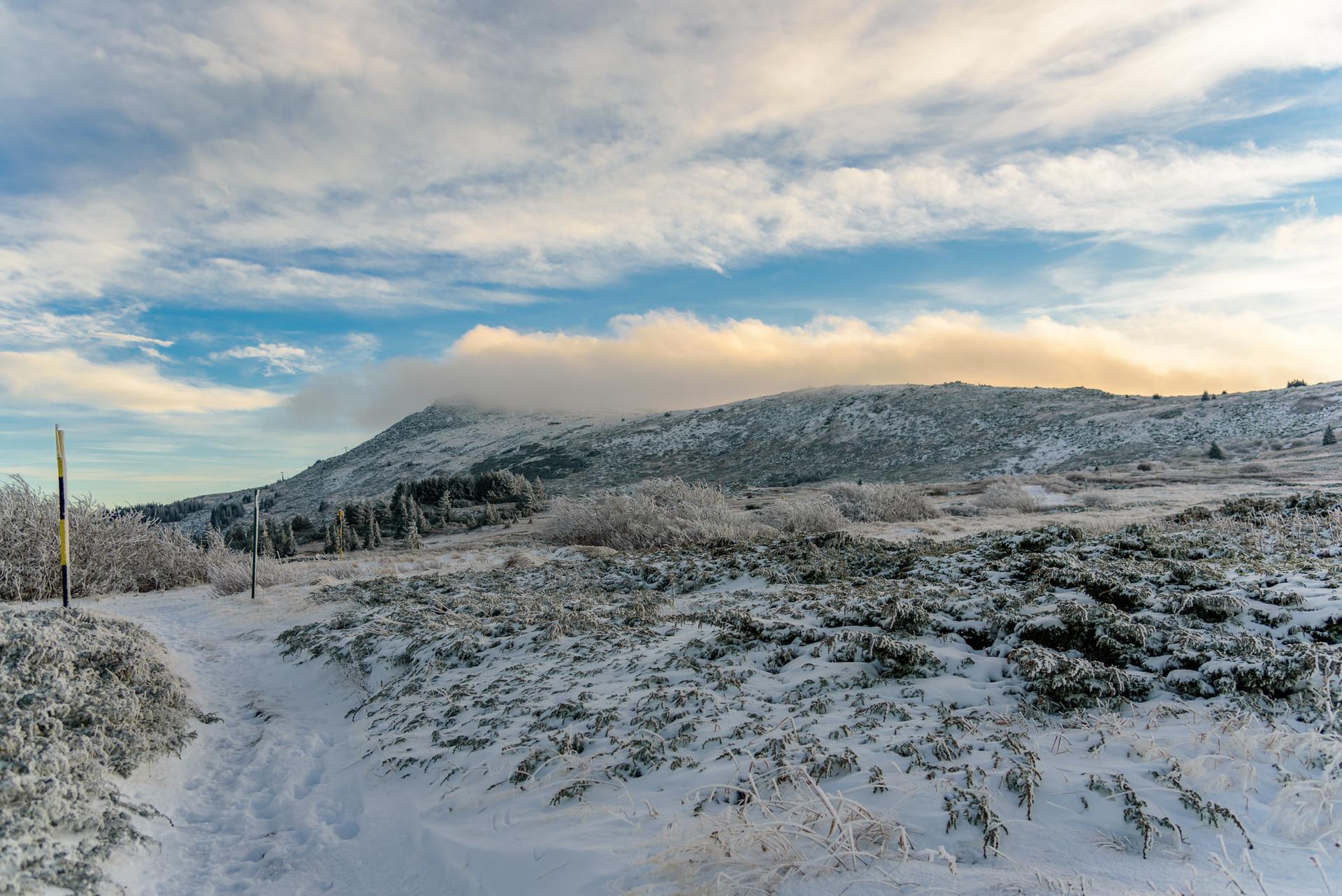 Vitosha winter.jpg