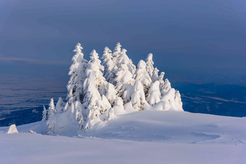 Vitosha in winter.jpg