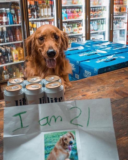 Dog Park Bar
