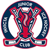 IJIHC Logo (No Background).png