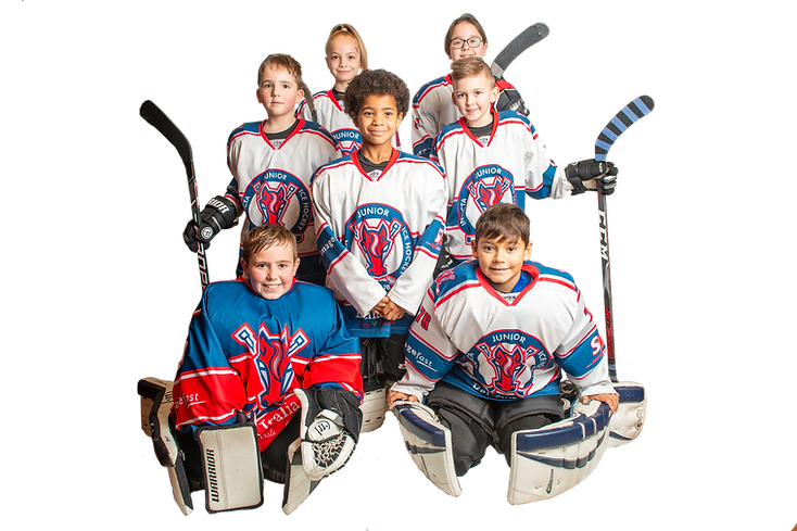 ICE HOCKEY GROUP.png