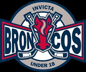 Broncos Logo (No Background).png
