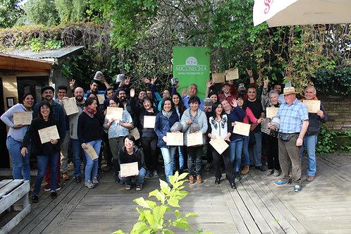 IX Seminario Online: Producción Comercial de Hongos Comestibles Ostra