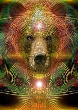 bear energy.png