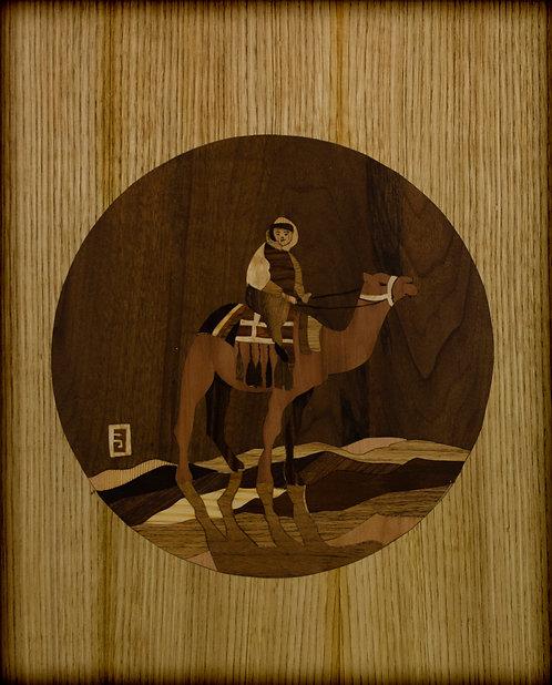 Kamel i Sahara 13520